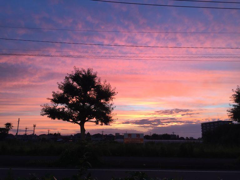宮崎県の美しい朝日