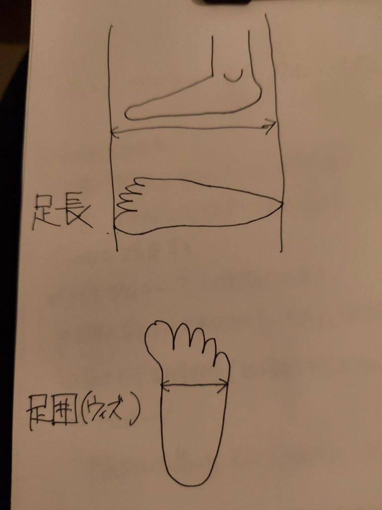 足のサイズ 計測方法