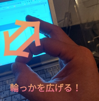 SEVの効果を実験した指の形