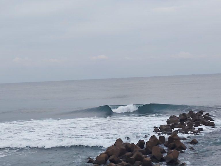 サーフィン 宮崎の波